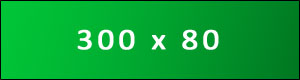 300x80